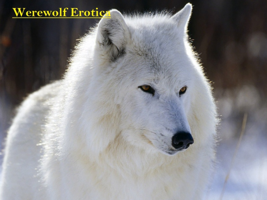 werewolf erotica